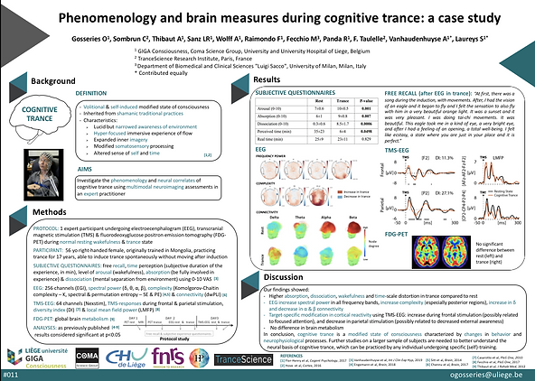 """Poster presented at the 60th Psychonomic Society Annual Meeting in Montréal, Québec, Canada, on November 15, 2019     """"Phenomenology and brain measures during cognitive trance: a case study""""  Gosseries O, Sombrun C, Thibaut A, Sanz LR, Wolff A, Raimondo F, Fecchio M, Panda R, F. Taulelle, Vanhaudenhuyse A*, Laureys S*"""