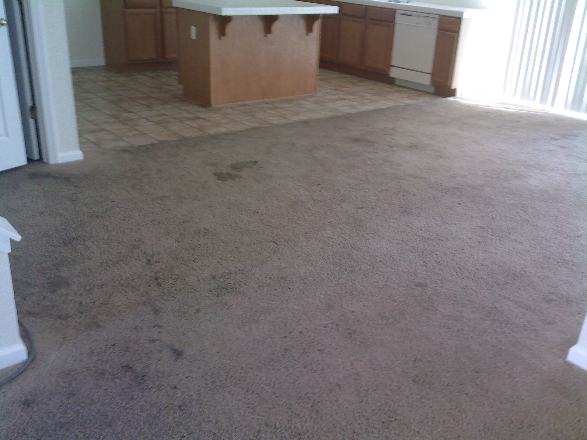 Before: dining room carpet