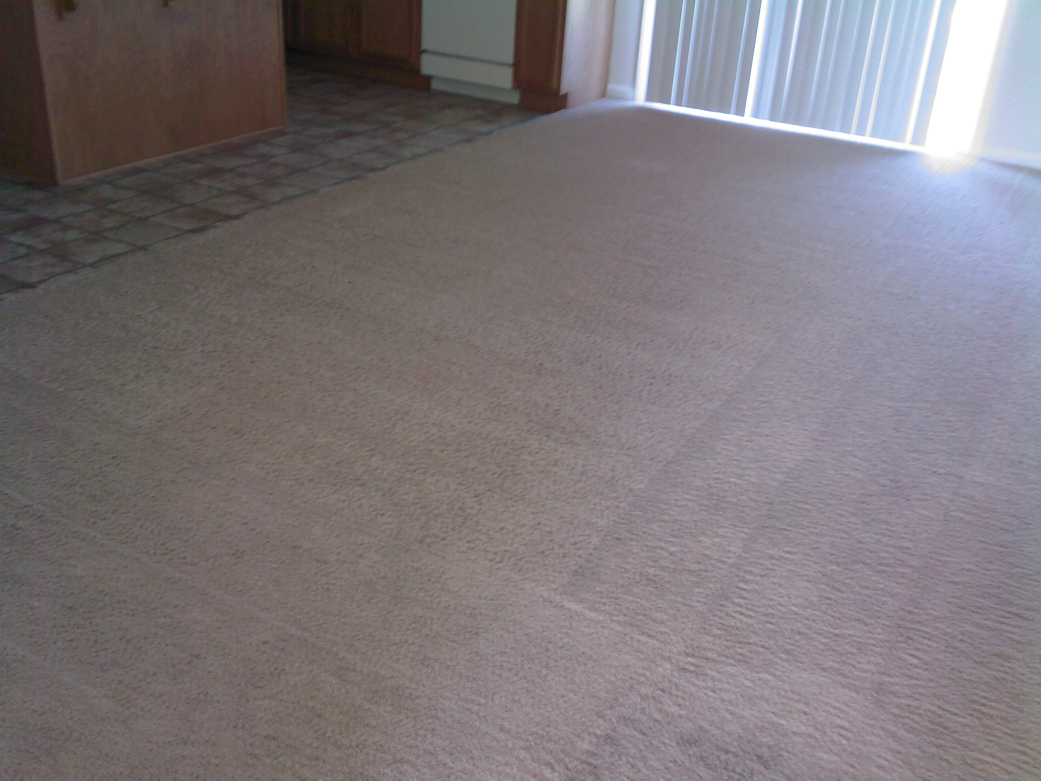 After: dining carpet