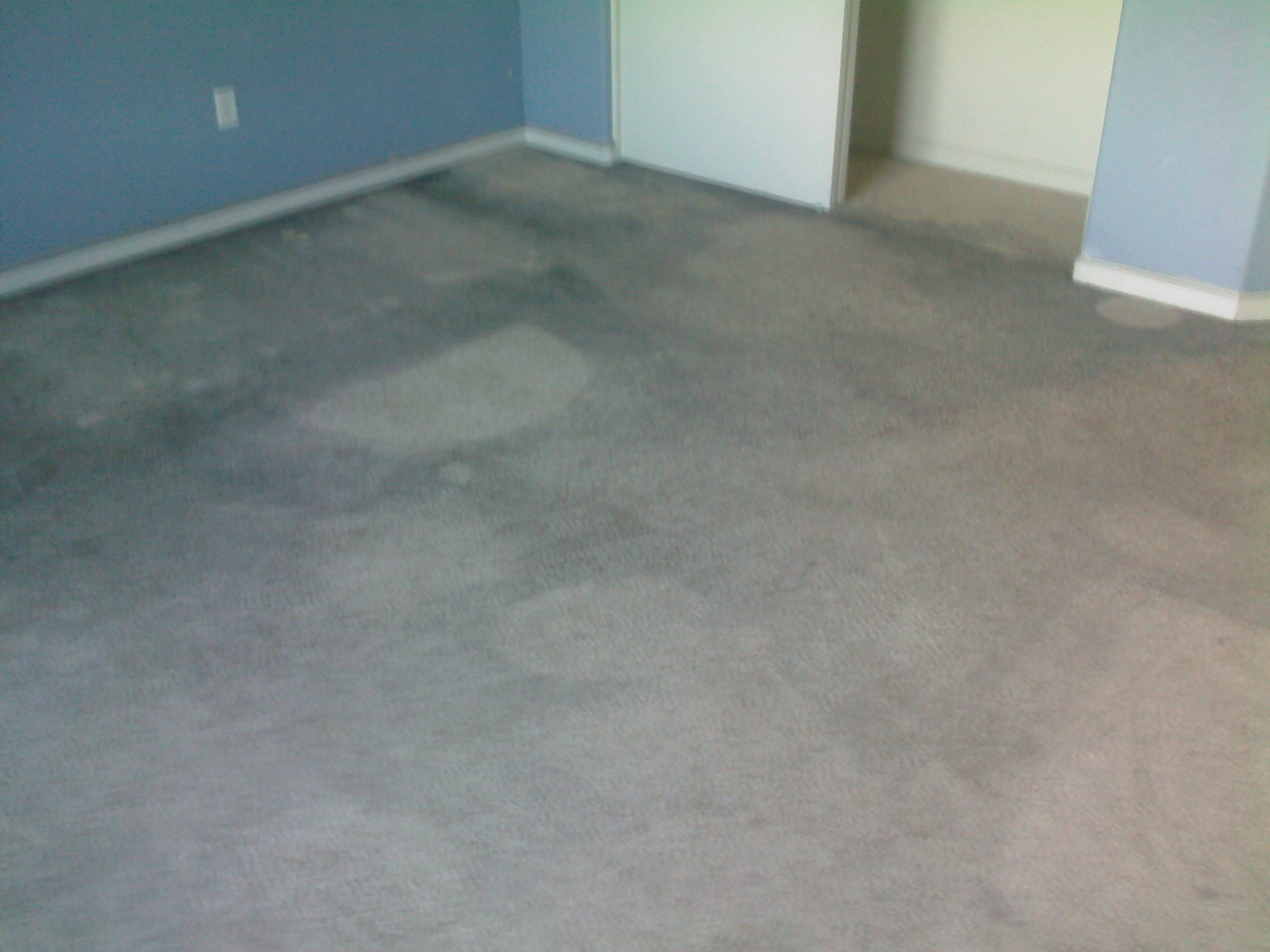 Before: over-spray paint in carpet