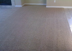 After: family room carpet cleaning