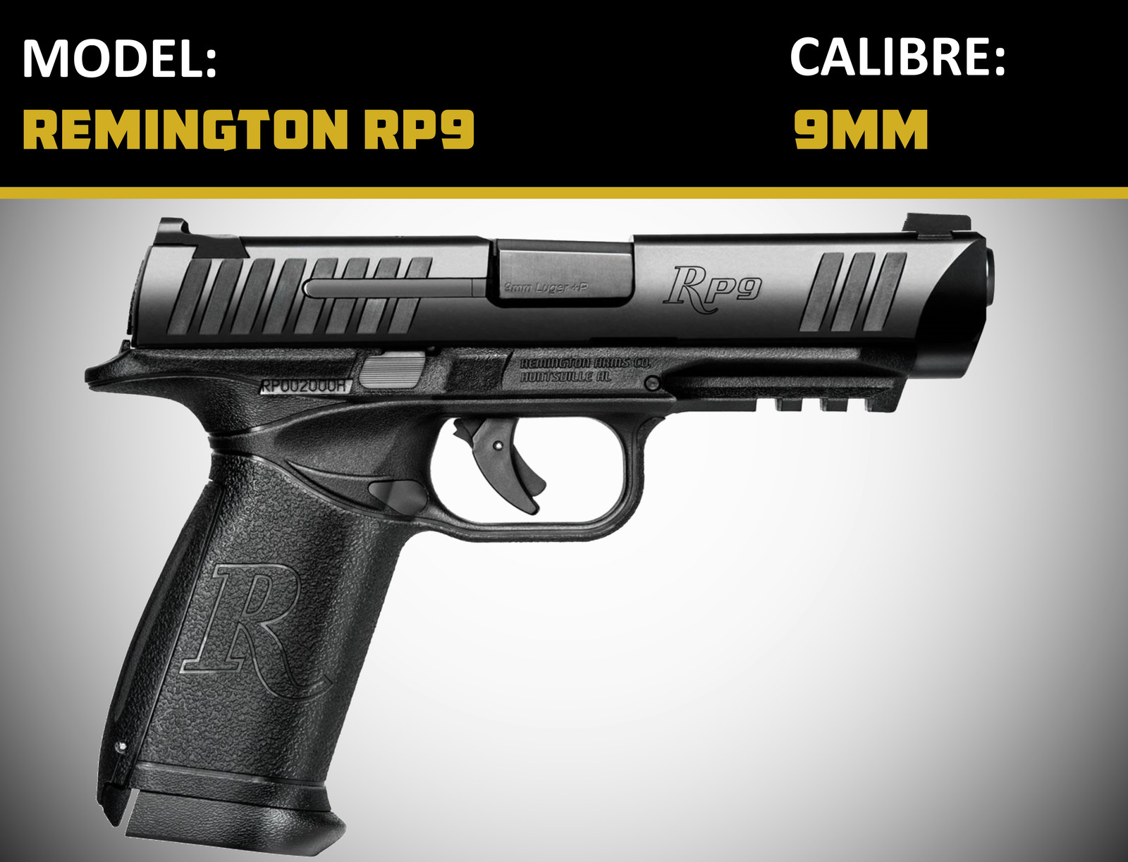 the range langley indoor shooting home handguns. Black Bedroom Furniture Sets. Home Design Ideas