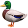 duck_1f986.png