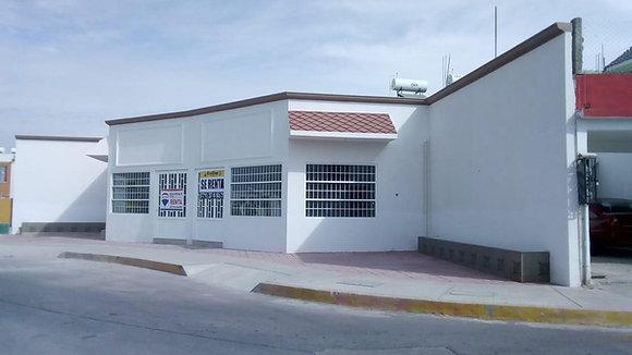 LOCAL EN CHAVARRIA, MINERAL DE LA REFORMA