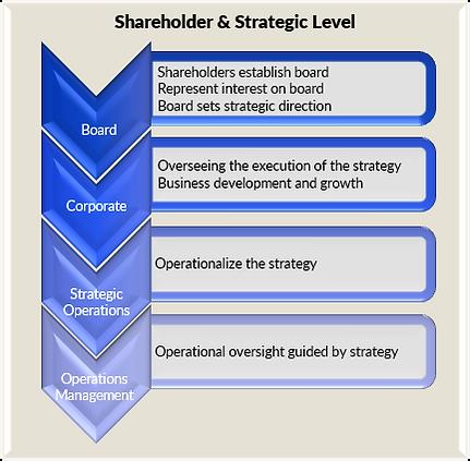 Shareholder and Strategic Level Business Processes