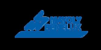 logo_BLEU_Mayoly Benelux.png