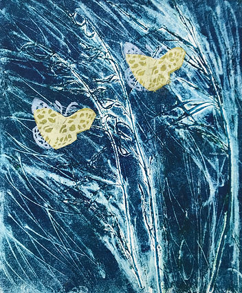 Butterflies in Wild Oats.jpg