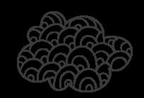 ענן_2.png