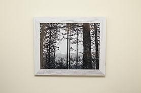 D Langham Prints_2.JPG