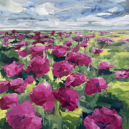 field-of-flowers.heic