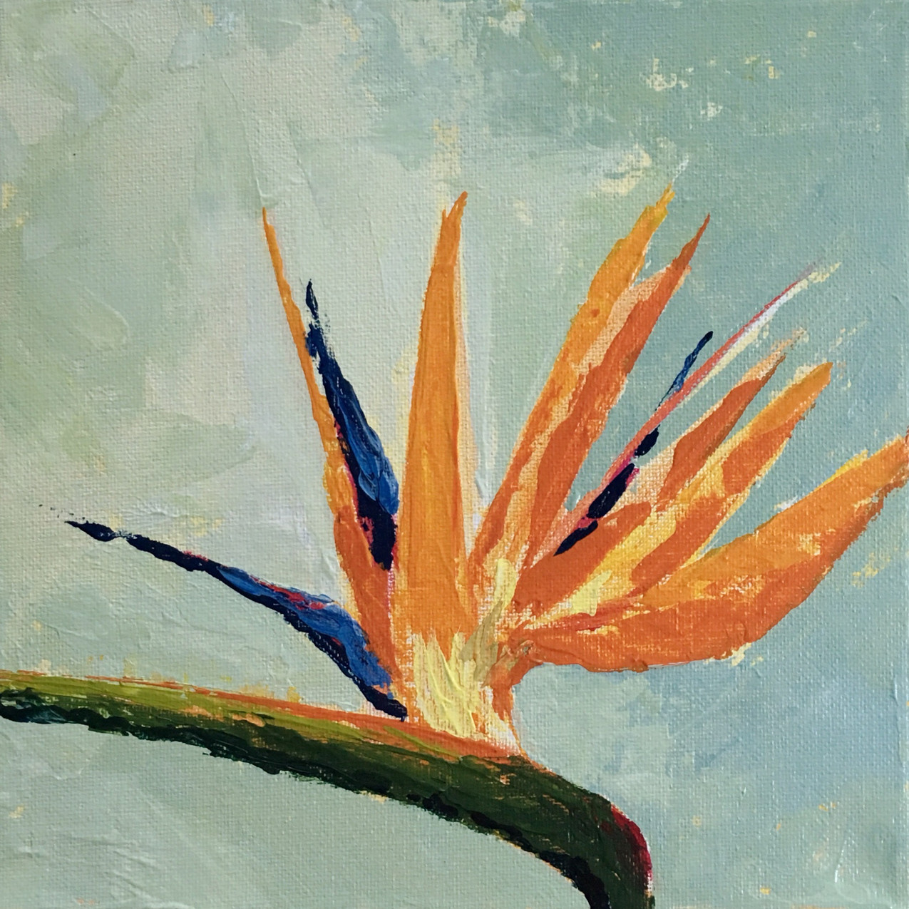 Acrylic painting of a bird of paradise flower.