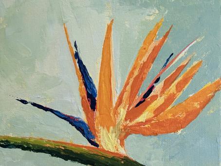 28 February Flowers