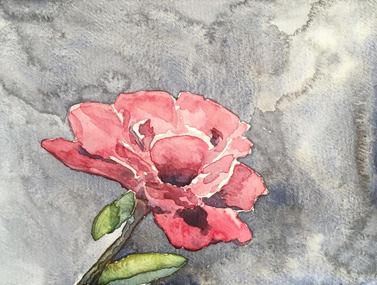 Watercolor painting of a rose flower.