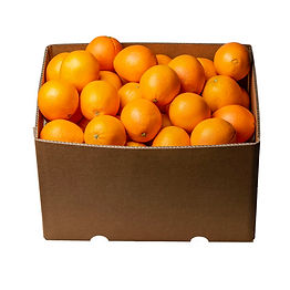 Boxed-Oranges-navel.jpg
