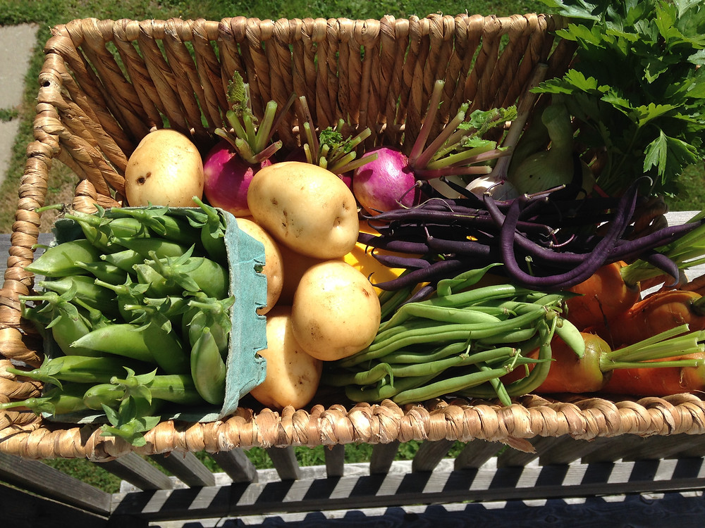 A small veg box for our neighbour