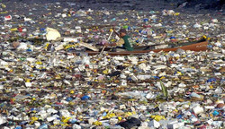 ENGAGE gegen Müll