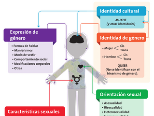 ¿Qué es o qué significa el término LGBTTTI?