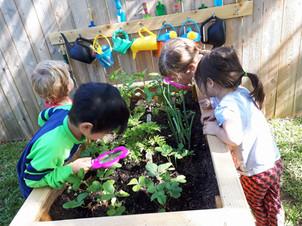 group-garden.jpg