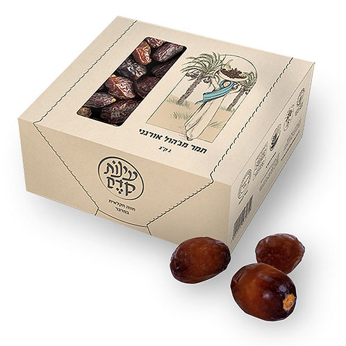 Organic Medjool Dates - 1 Kilo