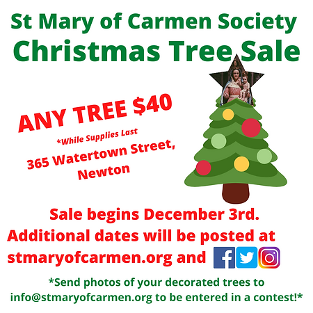 St Mary of Carmen Society Christmas Trees Newton Ma 2020