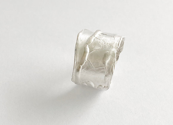 ring. SILVER FABRIC . Pick your magic