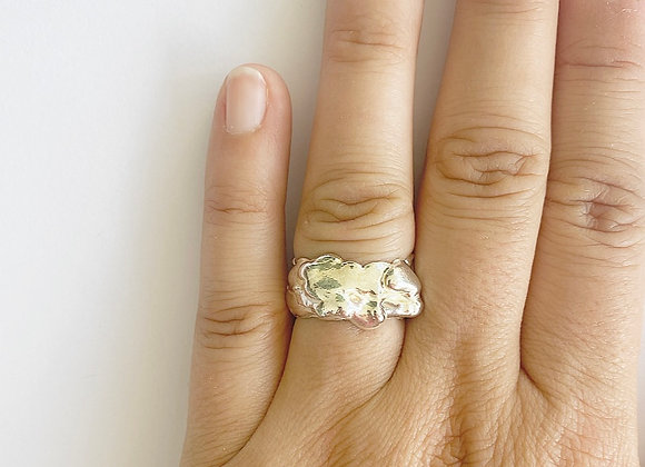 ring . STACKERS . melted I