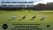 Recordatorio Golf.png