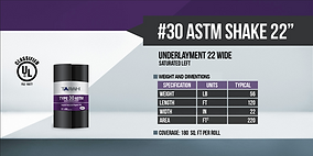 #30 ASTM SHAKE.png