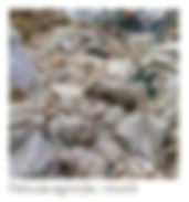 PELICULA AGRICOLA MULCH.jpg