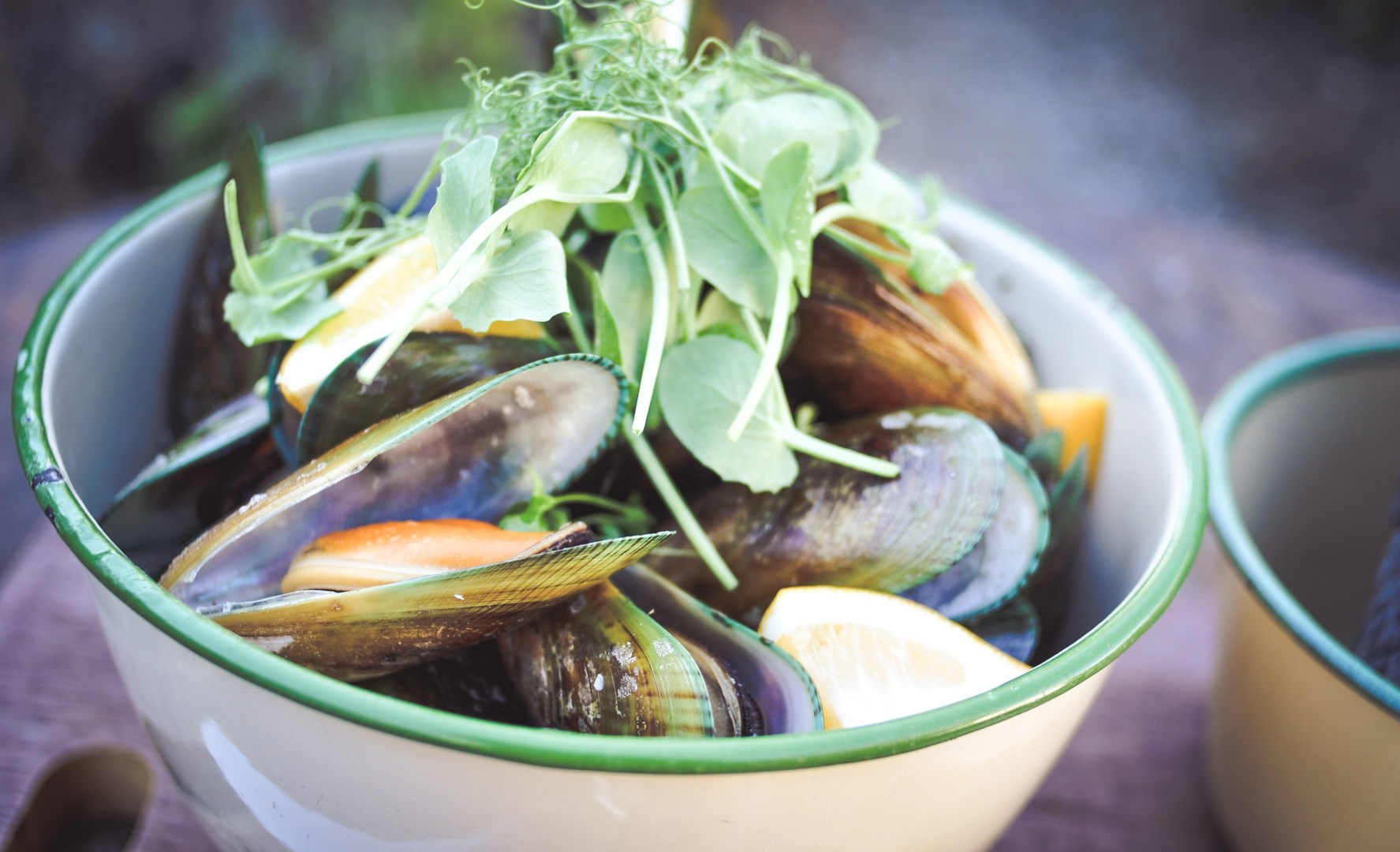 Chatto_Creek_Mussels.jpg