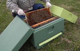 Beekeeper apiarist new langstroth hive redesign