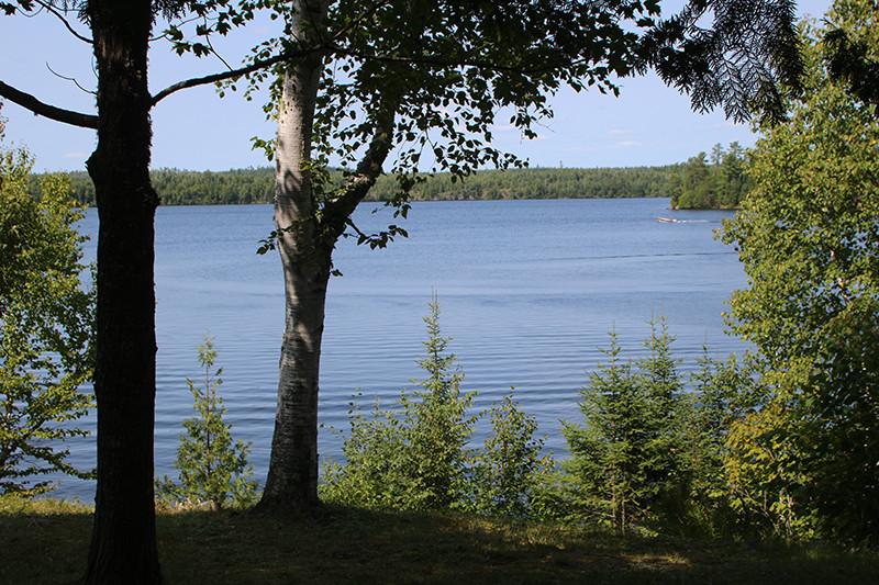 Moose Lake View from Keller Cabin