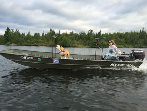Tow Boat and Bulldog