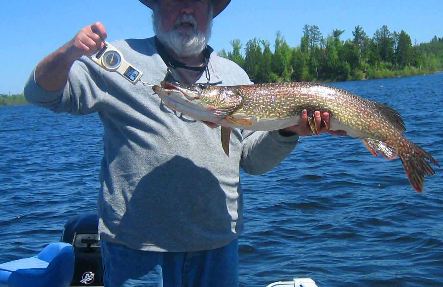 Moose Lake Fishing