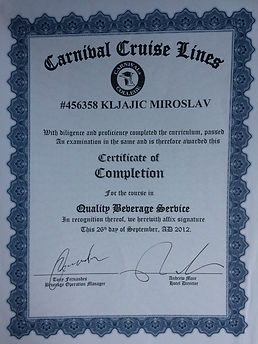 Miroslav Kljajic Diplome