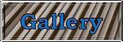 Meatal Gallery.png