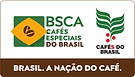 BSCA_TR.png