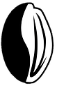 Logo_cafau.png
