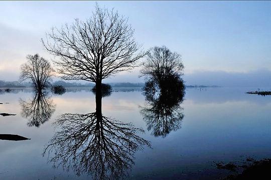 lac de grandlieu