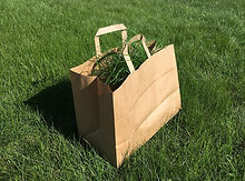 bag-2771100_1280.jpg