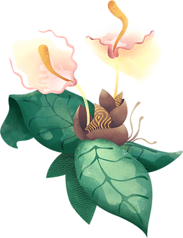 Tropical%20Flower_edited.png