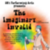 Imaginary Invalid Orange final.JPG