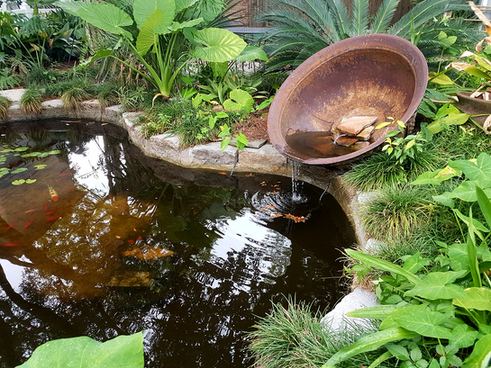 Sugar Kettle Fountain Spilling Into Fish Pond