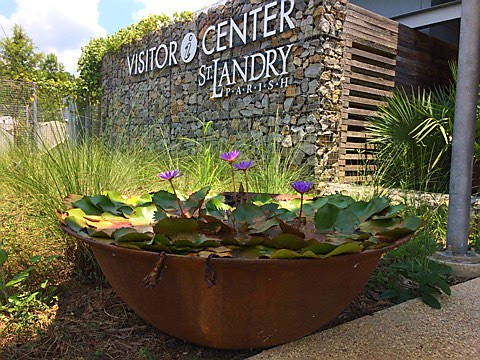 Water Feature Display with Blooming Water Lilies!