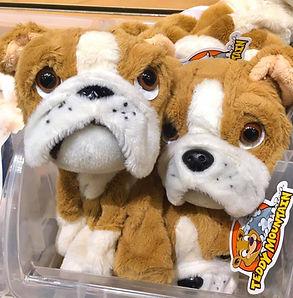 Stuffed Animals Scranton The Marketplace at Steamtown