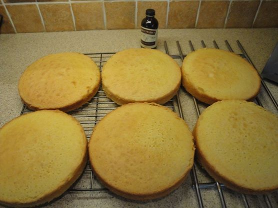 Huge batch of vanilla sponge cakes