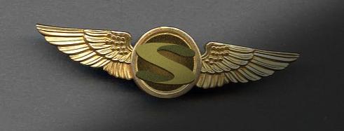 pilot wings.PNG
