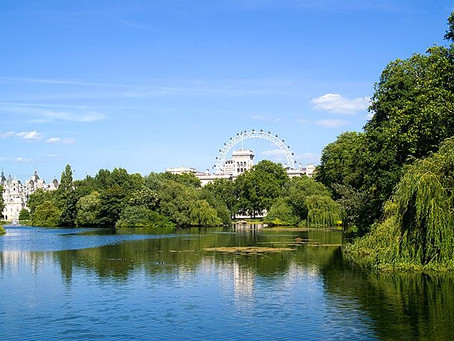 7 Glorious London Lakes to Visit This June