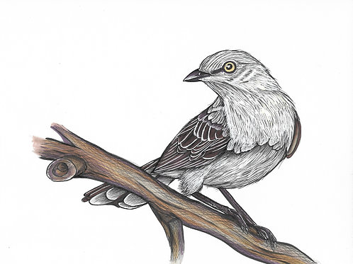 Mockingbird #1