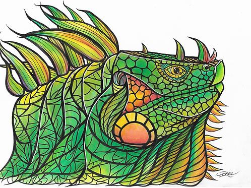 Iguana #1
